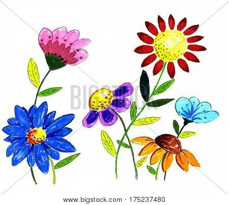 hand drawn colorful flower illustration isolated over white background