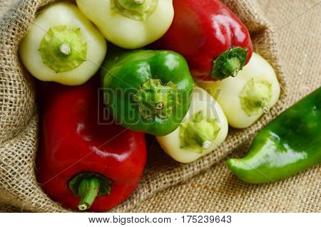 Colorful of Pepper,hot ,Sweet Heat Hybrid in sack bag on sack background.