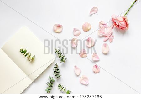 trandy woman design with flower petals and copybook on white table background top veiw