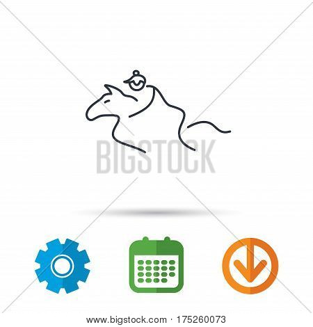 Horseback riding icon. Jockey rider sign. Horse sport symbol. Calendar, cogwheel and download arrow signs. Colored flat web icons. Vector