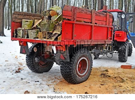 Red trailer with firewood attached to the tractor in the winter inwood or the park near place where tree has been cut. Side view from behind.