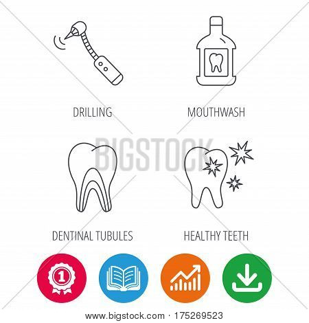 Tooth, mouthwash and dentinal tubules icons. Healthy teeth, dentinal tubules linear sign. Award medal, growth chart and opened book web icons. Download arrow. Vector