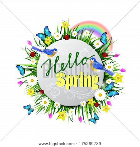 Hello Spring paper circle on a lawn with flowers blue butterflyes and ladybug bluebirds vector
