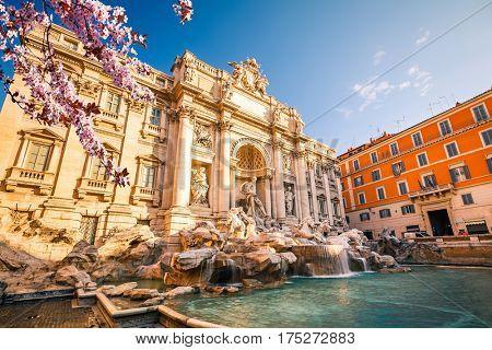 Fountain di Trevi in Rome at spring, Italy