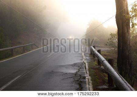 Road rough texture. Black asphalt with white line middle. Divided way. Sunrise, Spain, Fuerteventura