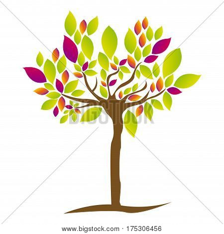 colorful tree plant with several leaves vector illustration