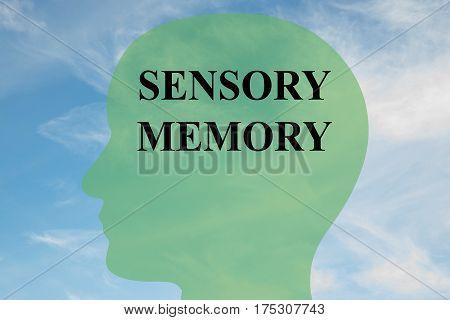 Sensory Memory Concept