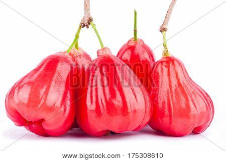 red rose apple or bell fruit  on white background healthy rose apple fruit food isolated
