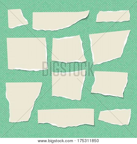 Set of isolated realistic empty vector paper poster mockup notes sticky banners and pieces of paper with ripped edges on green background.
