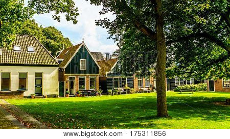Courtyard with grass and old Oak and Chestnut Trees in the historic village of Midden Beemster in the Beemster Polder in the Netherlands