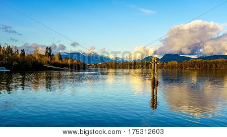 The quiet waters of the Fraser River with its pilings for Log Booms on a clear winter day