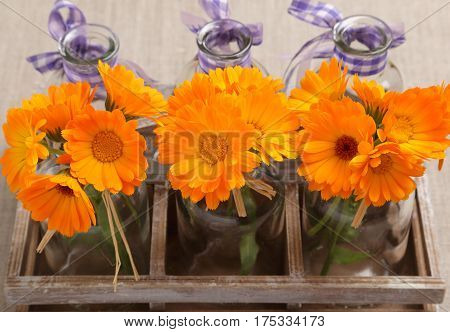 Bouquets of flowers of calendula in glass bottles.