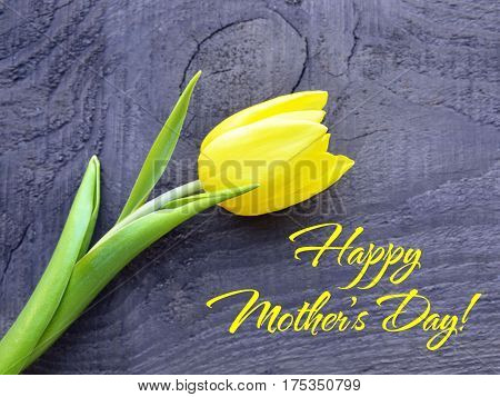 Happy Mother's Day concept.Yellow tulip on old wooden background with copy space.Tulip spring flower.Selective focus.