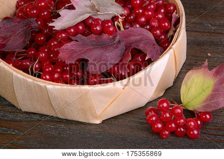 The guelder-rose berries on the wooden table