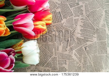 Tulips Flowers Bunch On Vintage Newspaper Background