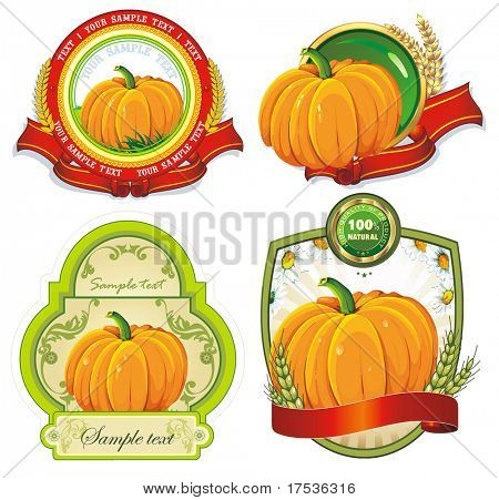 Vintage Labels Collection for a product_7. Floral Sticker template with design elements. Set of nature vector illustration tags of orange pumpkin.