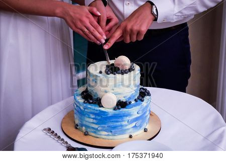 Two- tier blue cream wedding cake with blueberries and macarons. Bride and groom wedding couple together.