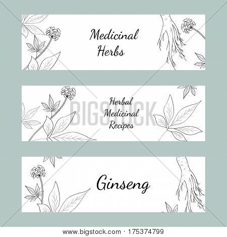 Set of three horizontal banners labels with herbs and ginseng root on white background sketch style. Hand draw vintage illustration of medicinal plants. For traditional medicine gardening.