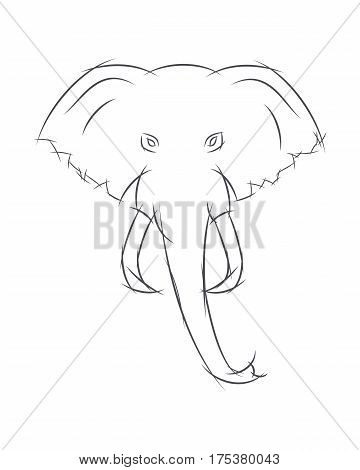 Elephant Head Front View. This Sketch May Be Used For Your Logo