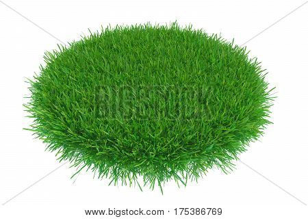 The round part of the area of green grass. 3d rendering