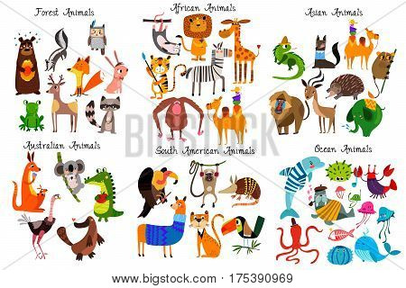 Big Collection Of Cute Cartoon Animals From Different Continents: Forest,australian, African ,south