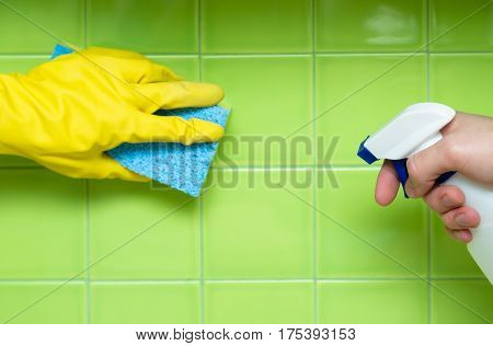 Lef Hand in Rubber Glove Holding an Yellow Sponge and Cleaning Tiles, Right Hand Holding a Spray Bottle