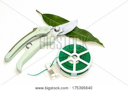 Garden soft tie and pruning shears gardening tools on white