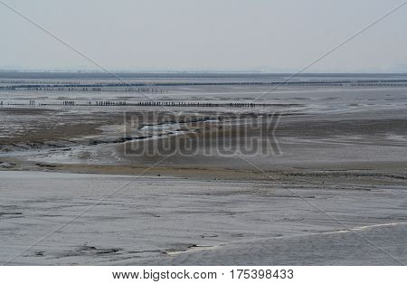 Netherlandswaddenzee-june 2016: Wadden Sea dries up during low tide