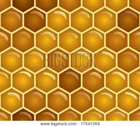 Vector honey background (seamless pattern)