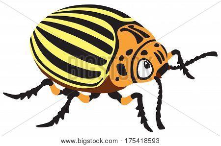 cartoon colorado potato beetle isolated vector illustration