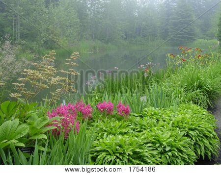 Reford Gardens In The Mist