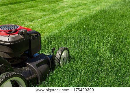 Lawn mower on green grass backyard garden