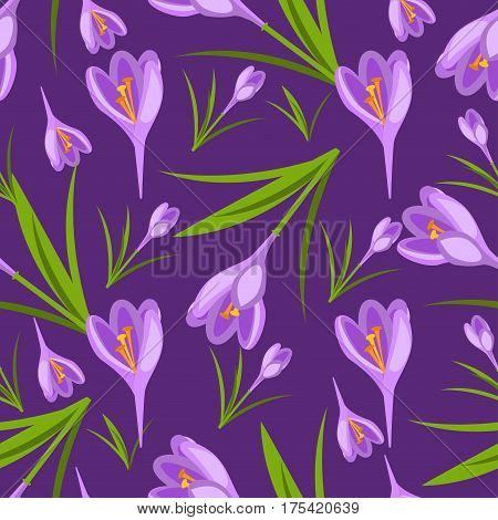 Purple crocuses in the snow vector pattern. Spring violet crocuses on white. Floral nature spring illustration crocus flower. Spring crocus flower. Greeting easter card crocus flower. Beautiful crocus flower