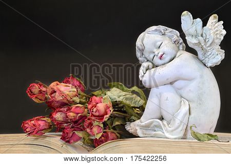 Cute angel figurine and roses on old book