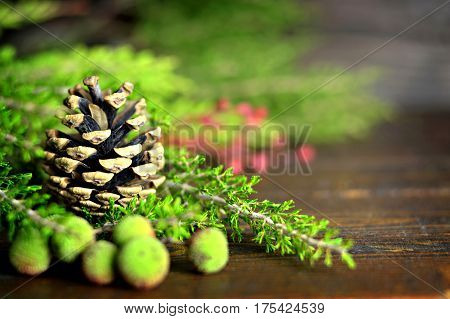 Natural Christmas decoration: Pinecone berries and Christmas tree branches