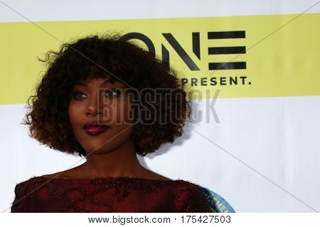 LOS ANGELES - FEB 11:  DeWanda Wise at the 48th NAACP Image Awards Arrivals at Pasadena Conference Center on February 11, 2017 in Pasadena, CA