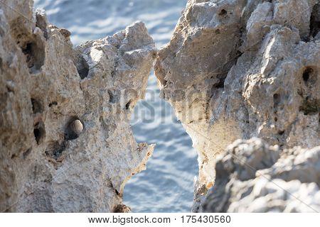 Marine Jagged Rocks At Sea
