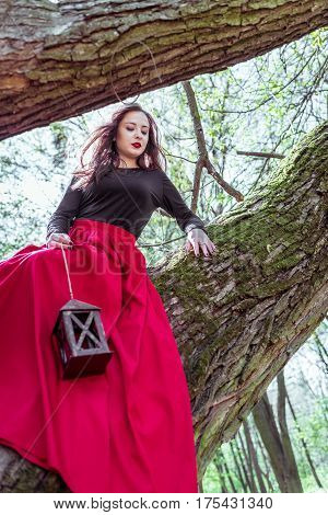 beautiful woman in a red dress with a lantern sits on a trunk in the forest