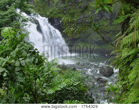 Falls And Pond