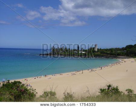 Beach Of Hawaii