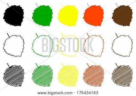 poplar aspen leaf - color set , poplar aspen leaf