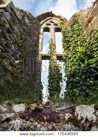 A chapel window in the ruins of Bridgetown Priory near Castletownroche in Cork County Ireland.