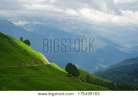Abkhazia. Alpine meadow. The mountains