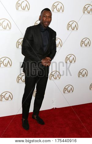 LOS ANGELES - JAN 28:  Mahershala Ali at the 2017 Producers Guild Awards  at Beverly Hilton Hotel on January 28, 2017 in Beverly Hills, CA