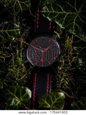 Wristwatch On Green Foliage Setting