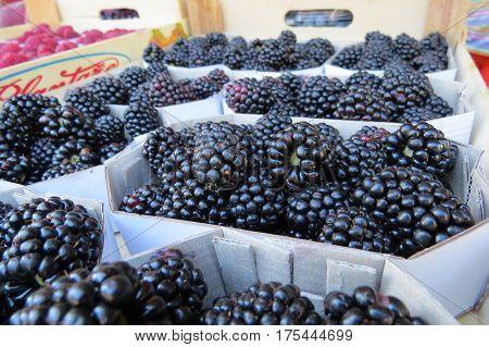 Bramble (dewberry, blackberries) at the market in Bar-city, Montenegro