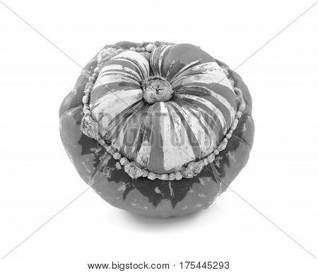 Turks Turban squash isolated on a white background