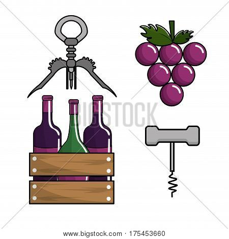 bottles of wine, grape and take out cork icon, vector illustration