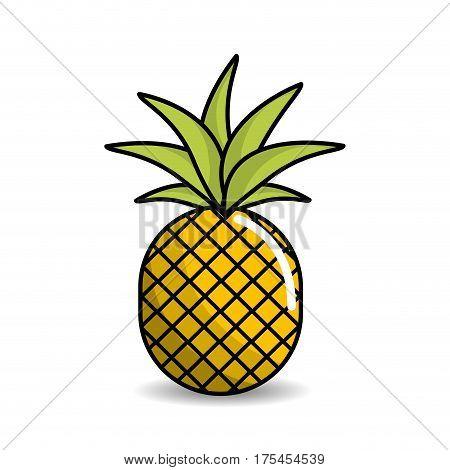 pineapple fruit icon stock, vector illustration design image