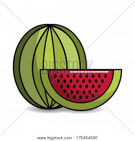 watermelon fruit icon stock, vector illustration design image